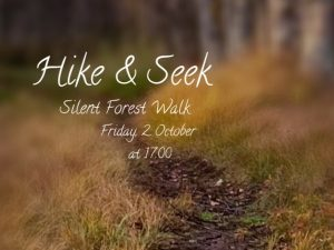 Hike & Seek Logo showing a forest trail
